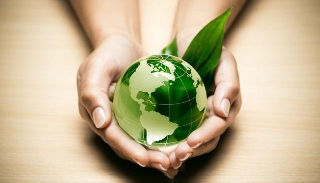 El Brasero, une entreprise éco-responsable